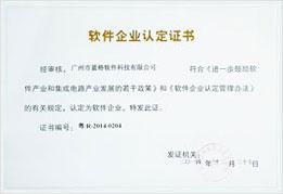 头头国际软件企业认定证书
